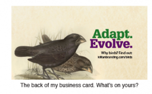 Business card backs can be powerful.